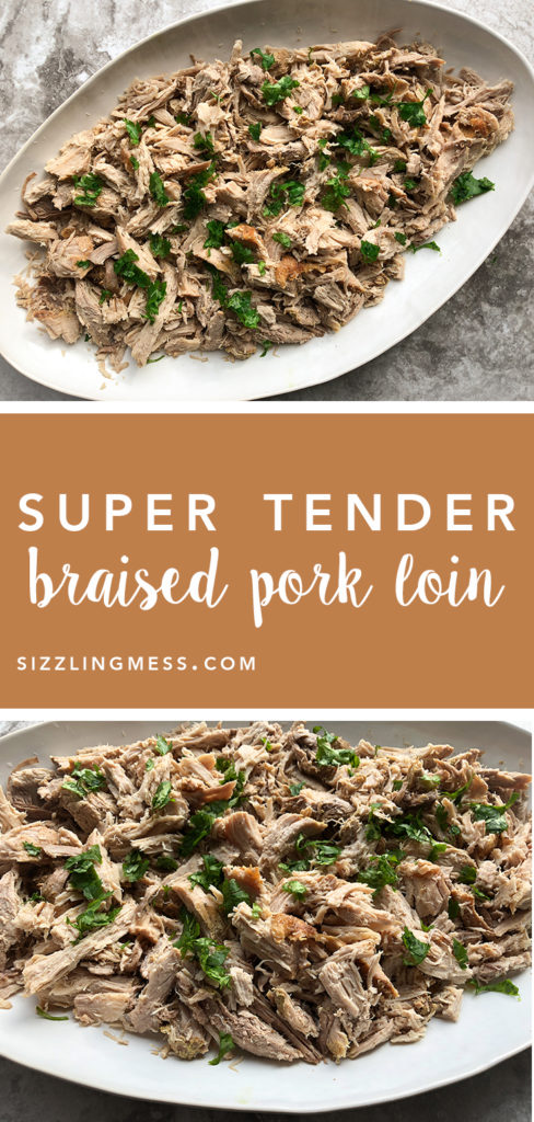Braised Pork Pinterest Pin Image